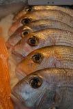 Rybi Mongers, podgrodzie rynek, Londyn UK obraz stock