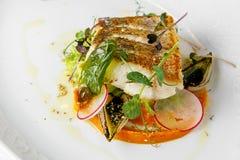 Rybi naczynie - smażący rybi polędwicowy zander Zdjęcia Stock