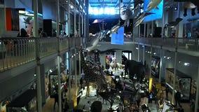 Rybi obwieszenie w muzeum, Edynburg zbiory