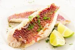 Rybi Polędwicowy z Świeżym wapnem i ziele Zdjęcie Royalty Free