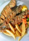 Rybi posiłek tradycjonalnie gotujący z cytryną i układami scalonymi Zdjęcie Stock