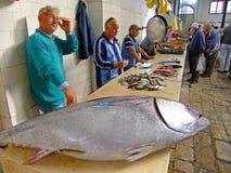 Rybi rynek, rozłam, Chorwacja obraz stock