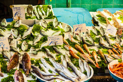 Rybi rynek w Włochy Fotografia Stock