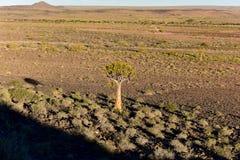 Rybi Rzeczny jar - Namibia, Afryka Obraz Royalty Free