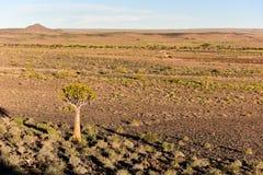 Rybi Rzeczny jar - Namibia, Afryka Fotografia Royalty Free