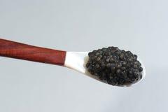Rybi ` s jajka w łyżce, Estugeon Zdjęcie Stock