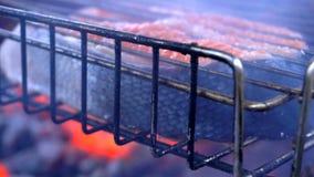 Rybi stek piec na węglach z dymem zbiory wideo