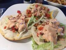 Rybi tacos dla lunchu zdjęcia royalty free