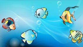 rybi tropikalny ilustracja wektor