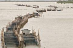 Rybi uprawiać ziemię w Chantaburi prowinci, Tajlandia Obraz Royalty Free