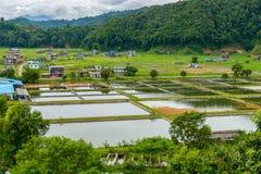 Rybi uprawiać ziemię w Nepal Obraz Royalty Free