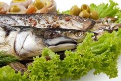 rybi ustaleni warzywa Fotografia Royalty Free