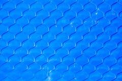 Rybi waży bezszwowego tekstury tło. Obrazy Stock