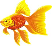 rybi złoty royalty ilustracja
