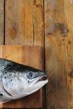 rybia świeża głowa Zdjęcie Stock