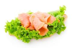 rybia świeża sałata Obrazy Stock