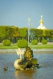 Rybia fontanna Obraz Royalty Free