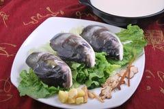 rybia głowa Zdjęcia Stock