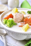 Rybia gęsta zupa rybna z warzywami obraz stock