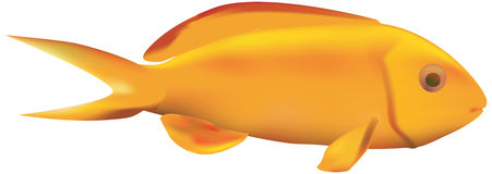 Rybia ikona Ilustracji