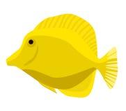 Rybia ikona Wektorowa płaska ilustracja Ocean lub denna ryba Obraz Royalty Free