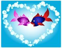 rybia miłość Obrazy Stock