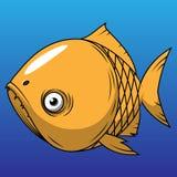 rybia pomarańcze ilustracja wektor