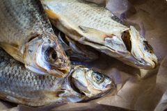 Rybia przekąska piwo soląca wysuszona ryba zdjęcia royalty free