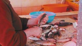 Rybia sprzedawcy przeliczania ryba w rynku kramu zbiory