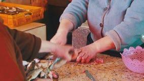 Rybia sprzedawcy przeliczania ryba w rynku kramu zdjęcie wideo