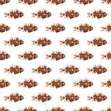Rybia tekstura koloru bezszwowy deseniowy Zdjęcia Stock