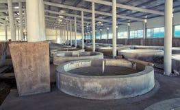 Rybiego gospodarstwa rolnego wnętrze Fotografia Royalty Free