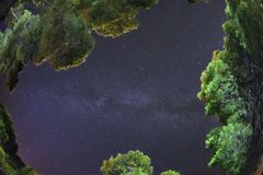 Rybiego oka obiektyw na drodze mlecznej między sosny San domina lasową wyspą Tremiti archipelag Apulia, Włochy to jest realem zdjęcie stock