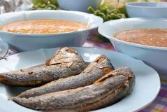 rybiego posiłku morze Obraz Royalty Free