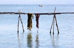 Rybołówstwo przemysł w Lago Di Varano, Włochy obrazy royalty free