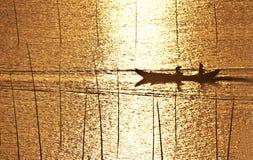 ryby dwie łodzie zdjęcie royalty free