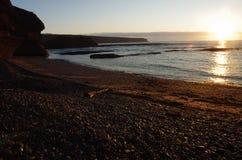 ryby morskie statki mewa niebo wznoszą się wschód słońca Obrazy Royalty Free