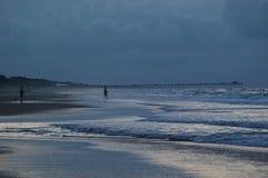 ryby surf Zdjęcie Royalty Free