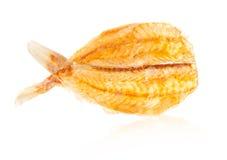 ryby suszone Obrazy Stock
