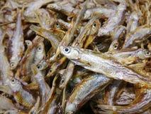 ryby suszone Zdjęcia Royalty Free