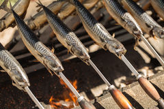 ryby z grilla Obrazy Royalty Free