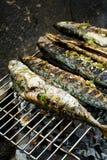 ryby z grilla na barbecue gorące Obrazy Stock