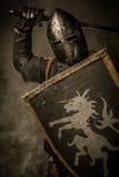 Rycerz w pełnej zbroi Zdjęcia Royalty Free