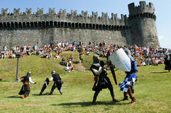Rycerze w akci podczas rocznego Renesansowego festiwalu Zdjęcie Stock