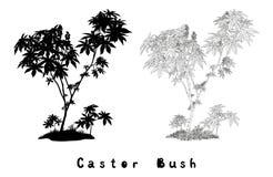 Rycynowi roślina kontury, sylwetka i inskrypcje, Zdjęcia Stock