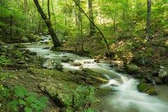 Ryczeć Biegającą zatoczkę, Jefferson narodu las, Virginia, usa fotografia stock