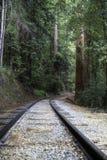 Ryczeć obozową linię kolejową zdjęcia royalty free
