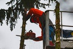 RYCZYWOL, POLOGNE - 18 février 2017 - arbre de coupe de bûcheron avec une tronçonneuse Image stock