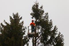 RYCZYWOL, POLONIA - 18 de febrero de 2017 - árbol del corte del leñador con una motosierra Fotografía de archivo libre de regalías