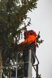 RYCZYWOL, POLONIA - 18 de febrero de 2017 - árbol del corte del leñador con una motosierra Foto de archivo libre de regalías